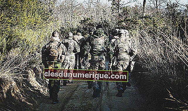 Faites connaissance avec 4 organisations militaires régionales
