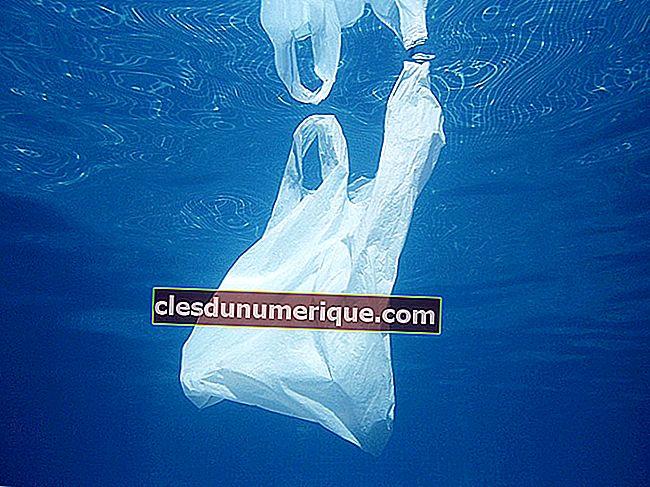 Définition, causes et impact de la pollution de l'eau