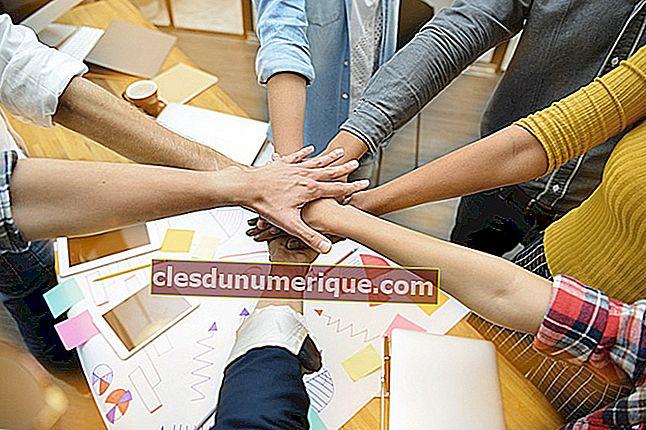 Definición de cooperación en varios campos de la vida