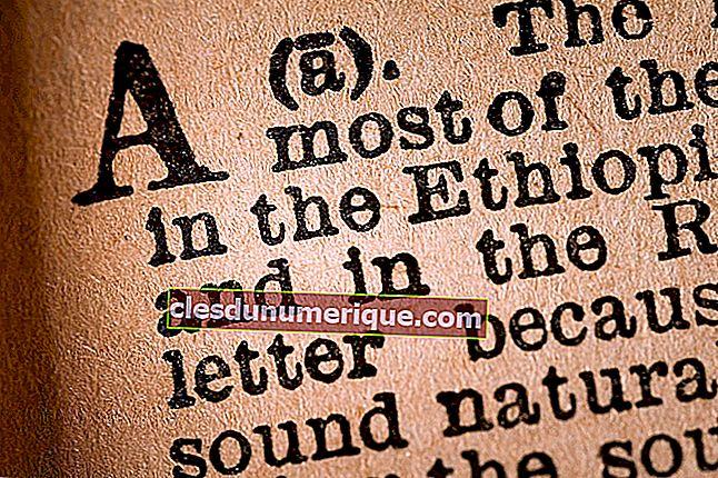 Artículo definido e indefinido