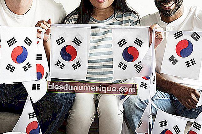 Estudiar en Corea del Sur, ¿en qué especialidades están más interesadas?