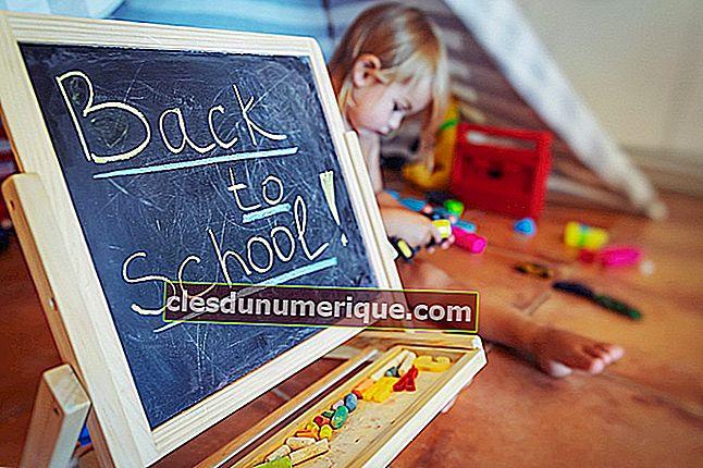 Remarque, ceci est le guide pour organiser l'apprentissage de la nouvelle année scolaire!