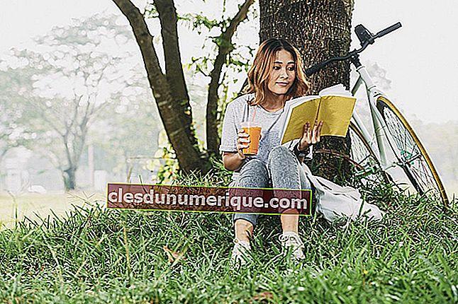 5 bons livros recomendados para leitura de férias