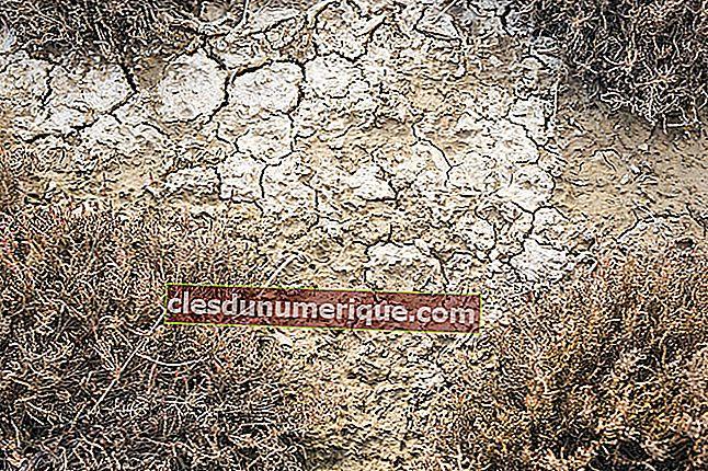 Utilisations et types de sols
