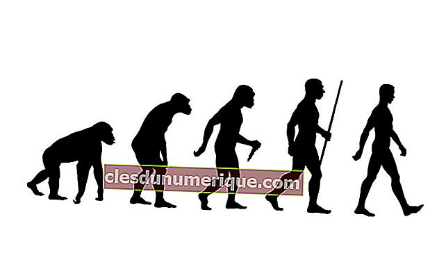 História da Humanidade Primitiva e Sua Difusão no Mundo