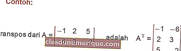 Connaître les types de matrices, quels sont-ils?
