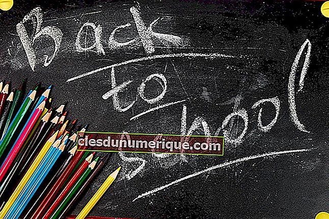 Viaje del currículo educativo en el mundo