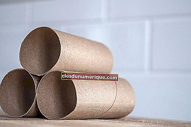 Formule de surface de tube, comment calculer et exemples de problèmes