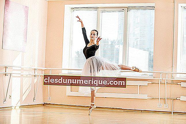 Elementos del arte de la danza