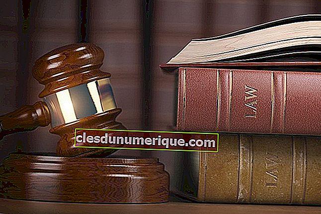 Rol ve Görevlerine Göre Yargı Kurumu Düzeyleri