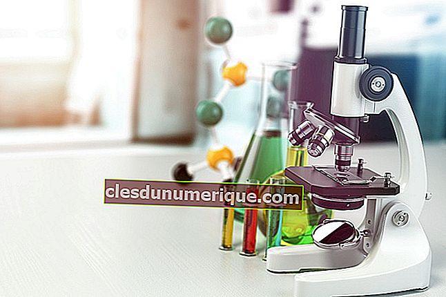 Características y tipos de equilibrio químico